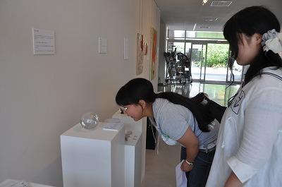 ガラス作品を見る学生