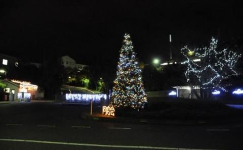 クリスマスイルミネーション2011について