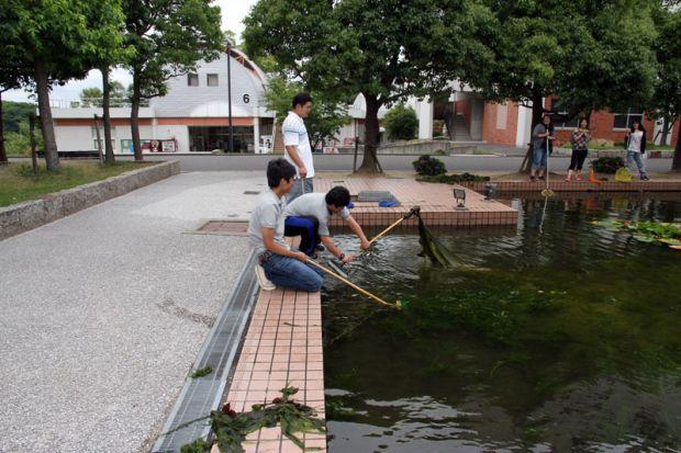 1号館周りの池を清掃