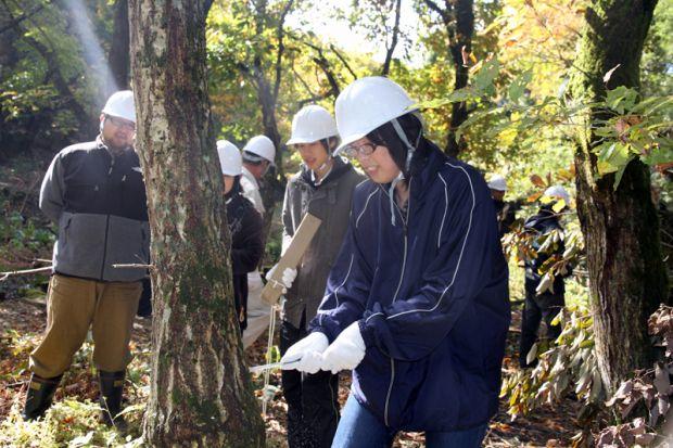 広葉樹林の間伐作業体験
