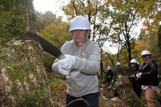 のこぎりで木を切る学生
