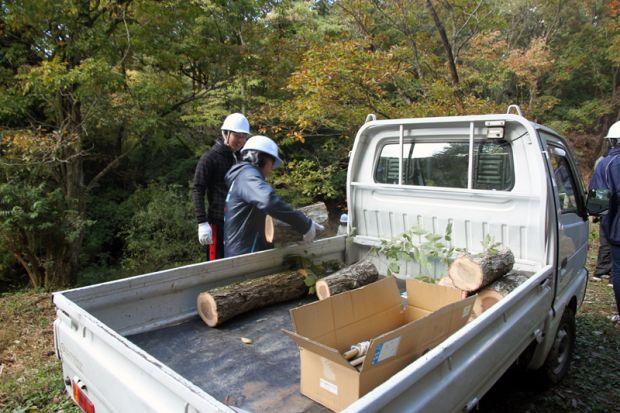 伐採した気を軽トラックに載せる