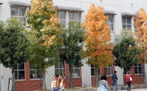 学内は秋模様。