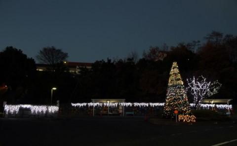 同窓会クリスマスイルミネーション開催中
