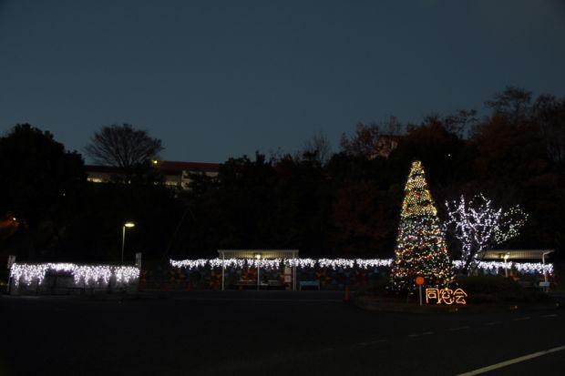 同窓会クリスマスイルミネーション