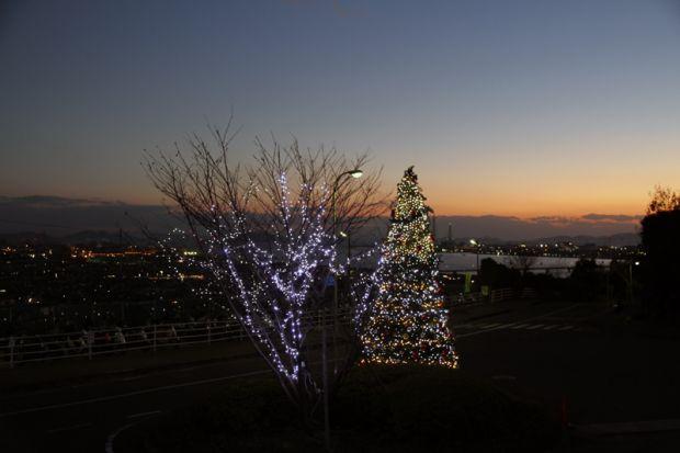 水島の夕景とクリスマスツリーイルミネーション