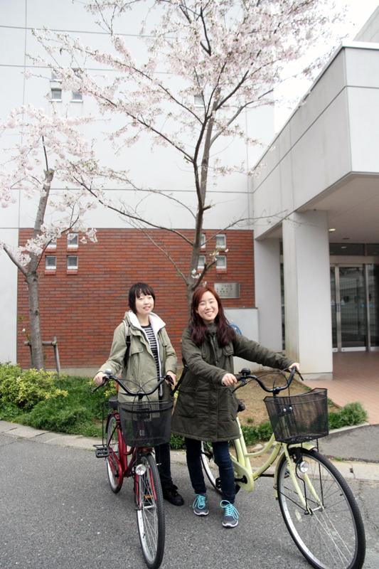 桜の木の下で留学生の方と自転車