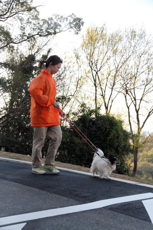 犬の散歩をする松尾麻那さん