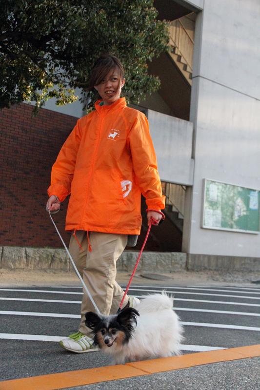 犬のクッキーを散歩させる松尾麻那さん