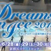 Dreams on Ice 2013