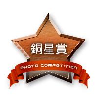 bronze_star