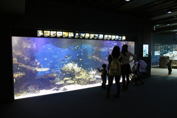 京都水族館内