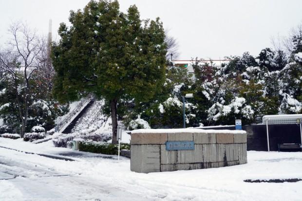 雪が積もった正門前