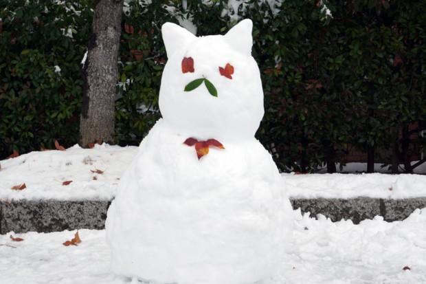 ねこみたいな雪だるま