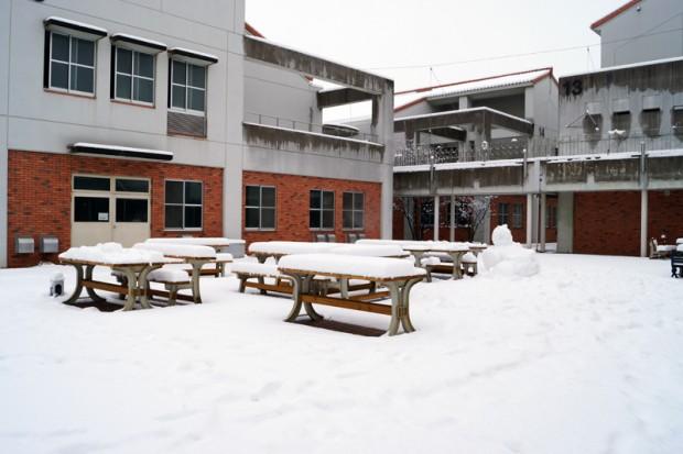 雪が積もった芸術棟広場