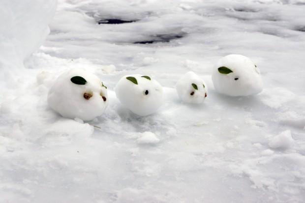 4匹の雪うさぎ