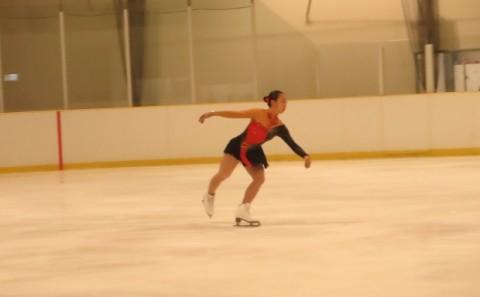 第44回全岡山フィギュアスケート選手権大会について
