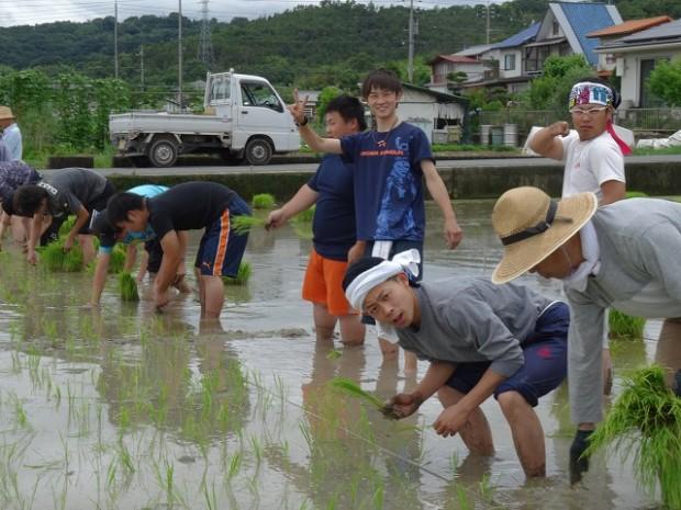田植え中の男子学生