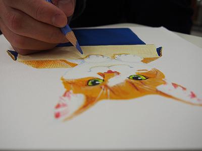 アクリル絵の具と色鉛筆で描いた猫の絵