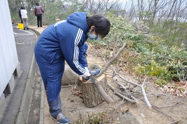 木を切る学生さん