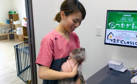 卒業生の論文が日本動物看護学会誌に掲載されます(卒業生活躍情報vol.131)。