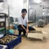 野菜などを美味しく調理する学生食堂スタッフ