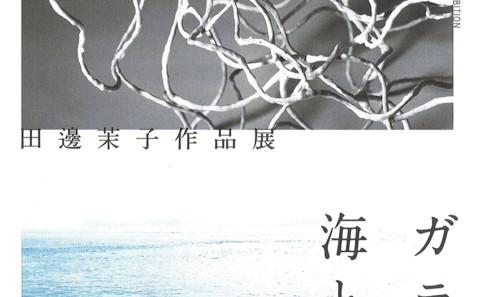 卒業生活躍情報vol.176